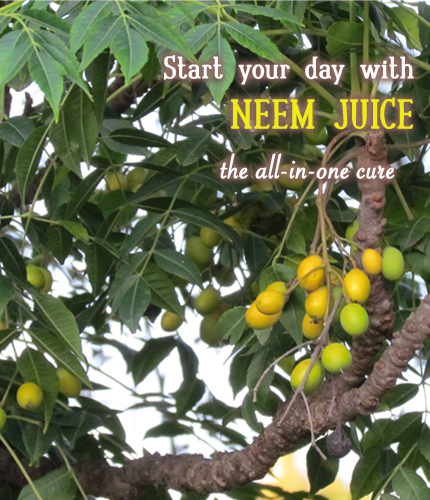 Neem Juice, Nirahari's Morning Drink